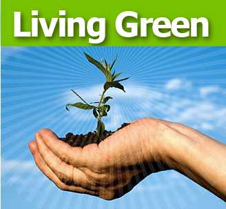 Green Living home design
